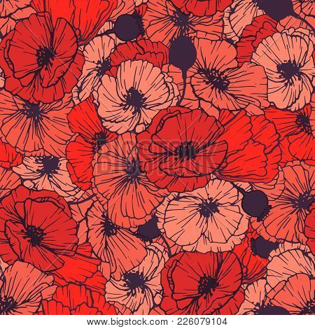 Red Poppies Seamless Pattern. Summer Flowers In Linear Engraving Style. Vector Floral Repeating Patt