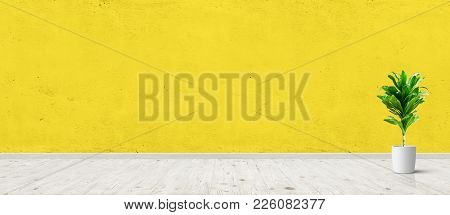 Vintage Room Interior With Plant In Pot Over Yellow Concrete Wall And Wood Floor Background. Wide Pa