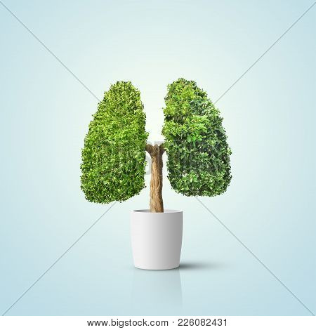 Illustration. Green Tree Shaped In Human Lungs. Conceptual Image