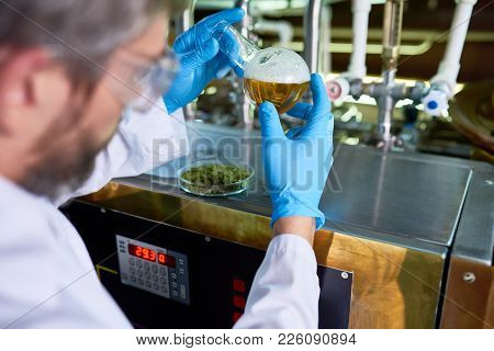 Close-up Of Busy Experienced Beer Engineer In Gloves Checking Sort Of Beer In Flask While Holding Ex