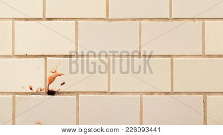 Violence As A Blood Spot On The Tiled Wall