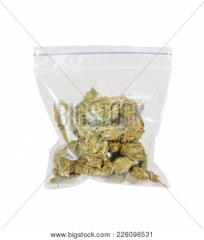 Big Plastic Bag Of Medicinal Cannabis Marijuana. High Resolution Photo.