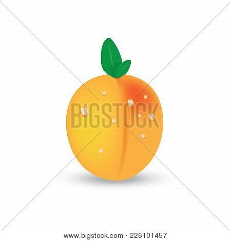 Bright Vector Set Of Colorful Half, Slice And Whole Of Juicy Peach. Fresh Cartoon Peaches Isolated O