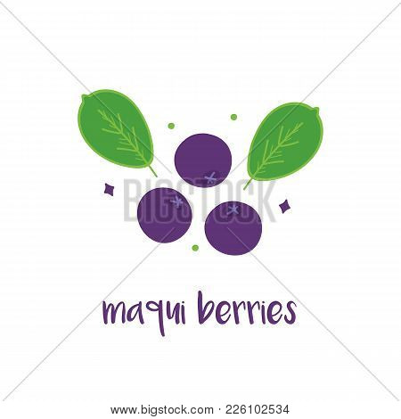 Doodle, Hand Drawn Maqui Berries With Leaves Isolated On White Background.