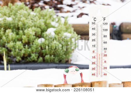 Thermometer In Winter Garden Background Green Plant And White Snow