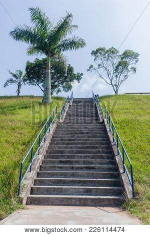 Steps Staircase Hillside