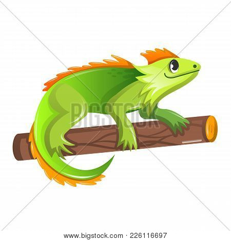 Beautiful Funny Cartoon Green Iguana Sitting On A Tree. Large Colorful Herbivorous Lizard, Iguan Fam