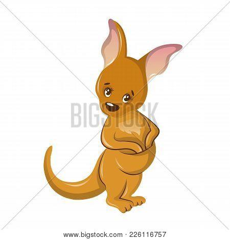 Beautiful Funny Cartoon Kangaroo. Colorful Animal Of Kangaroos, Family Of Marsupial Mammals, Spread