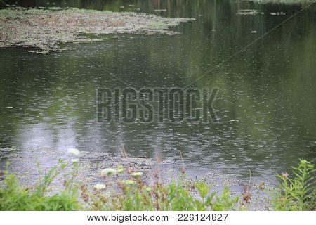 Rain Drops Hitting Water On Sliver Lakes Water In Indiana