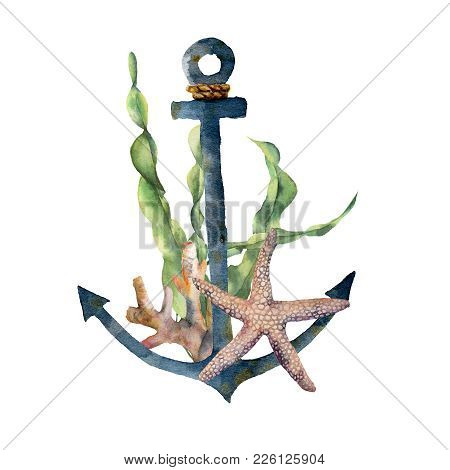 Watercolor Anchor With Laminaria Branch And Coral Reef. Hand Painted Underwater Illustration With St