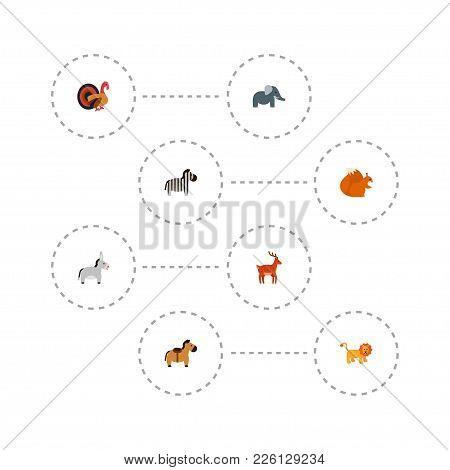 Set Of Animal Icons Flat Style Symbols With Turkey, Donkey, Elephant And Other Icons For Your Web Mo