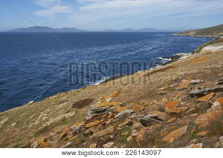 Rocky Northern Coast Of Carcass Island In The Falkland Islands