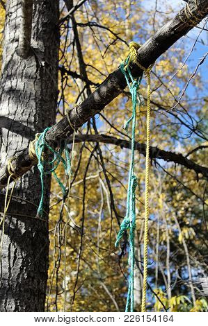Various Ropes Left Behind On Game Hanging Poles.
