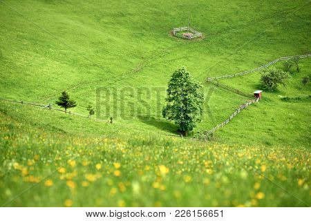 Summer Landscape Of A Mountain Hill With Grass Of Vibrant Green Color.