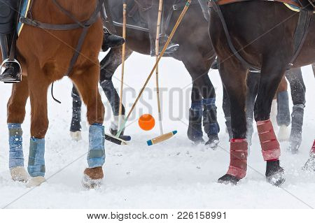 Game Horse Polo In Winter On Snow. Legs Of Horses And Hoof, Cticks And Ball