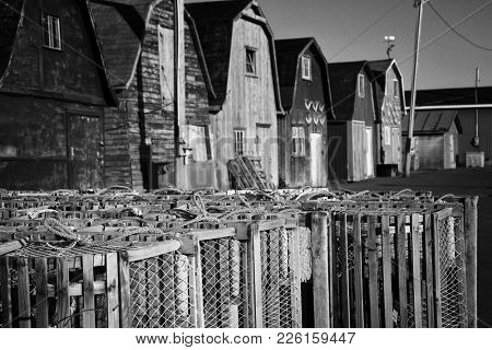 Lobster pot with oysters barns in background  in New London, Prince Edward island also called PEI.   Black and white picture.