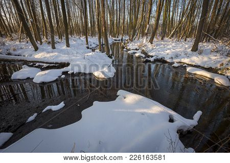 Beautiful Wild River Flowing Through The Polish Forest. Natural Beautiful Landscape.