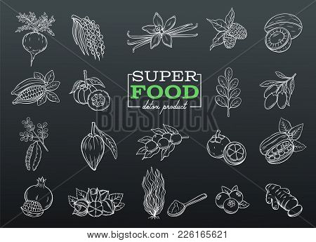 Vector Sketch Superfood Icons Set. Healthy Detox Natural Hand Drawn Product Of Lucuma, Coji Berries,