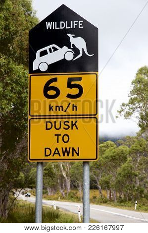 65 Km/h Dusk To Dawn Signage, Tasmania, Australia