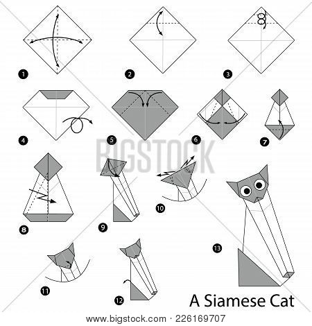 Step By Step Instructions How To Make Origami A Siamese Cat