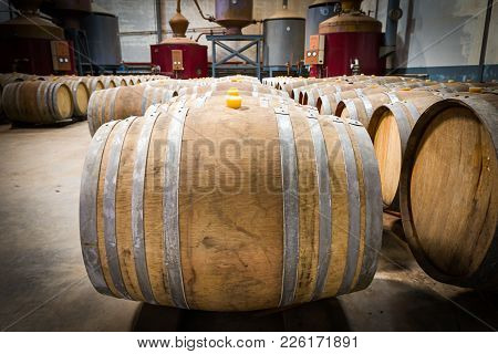 Wine Barrels In The Cellar Of The Winery,wine Barrels In Wine Vaults
