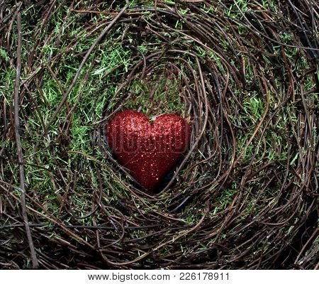 A Red Shiny Heart In The Middle Of A Green Mossy Background