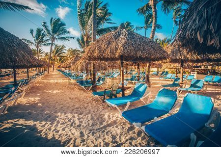 Tropical Beach Resort In Punta Cana, Dominican Republic.