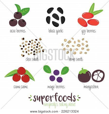 Set, Collection Of Trendy Superfoods. Doodle Illustrations Of Acai, Black Garlic, Goji, Chia, Hemp S