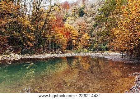 Late Autumn On The Hosta River. Sochi National Park.