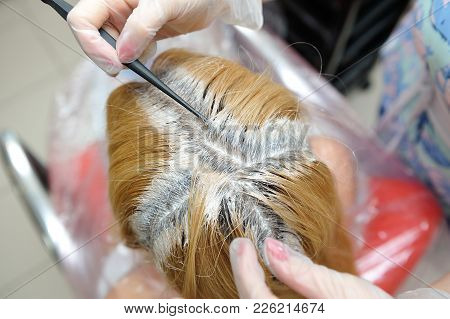 The Hairdresser Uses A Brush To Apply The Dye To The Hair, For Dyeing