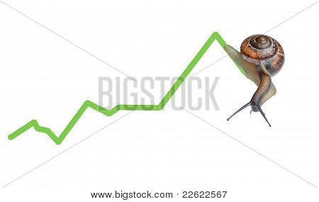 Snail on chart currency isolated on white background poster