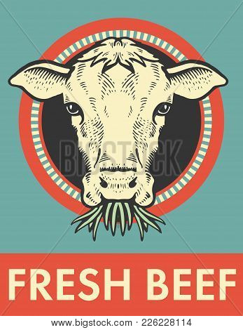 Label Of Bull. Cow Looks And Chews The Grass. Sketch Of A Cow Face. Vector Illustration. Label Or St