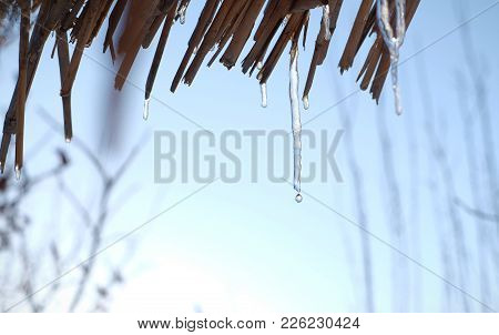 Icicle Melting On The Blue Sky Background. Spring Is Coming.