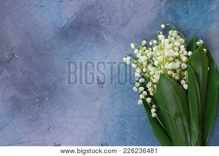 Lilly Of The Valley Flowers And Leaves On Gray Background With Copy Space