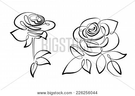 Vector Black And White Flowers Roses Single Continuous Line. Illustration In The Style Of Line Art