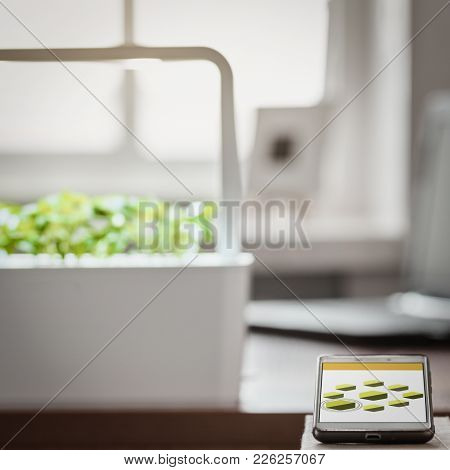 Green Potted Plants With Local Lights In The Modern Smart Lab And Remote Control On Work Place At Ro