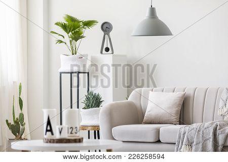 Bright Living Room Interior