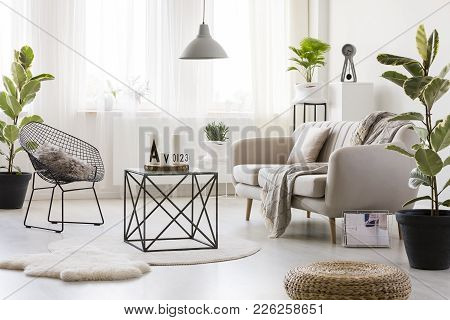 Sofa In Bright Living Room