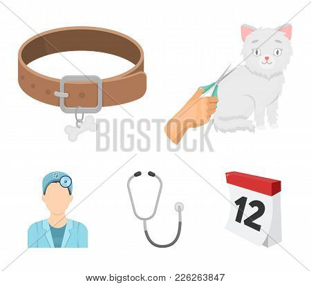 Collar, Bone, Cat, Haircut .vet Clinic Set Collection Icons In Cartoon Style Vector Symbol Stock Ill