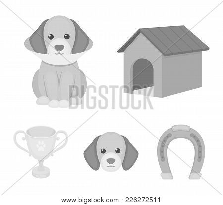 Dog House, Protective Collar, Dog Muzzle, Cup. Dog Set Collection Icons In Monochrome Style Vector S