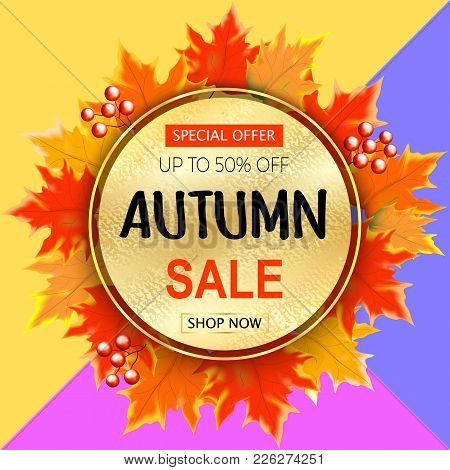 Autumn Sale Text Banner With Colorful Seasonal Fall Leaves Background For Shopping Discount Promotio