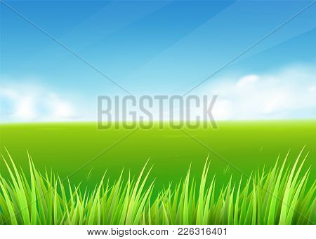 Meadow Field. Summer Or Spring Nature Background With Green Grass Landscape, Clouds, Sky. Farmland S