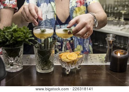 The Barman Is Making Tropical Cocktails, Clo