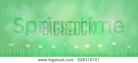 Springtime Background. Green Landscape With Flowers And Grass In The Foreground. Text: Springtime