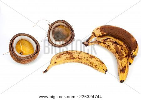 Rotten Black Bananas And Furry Coconut. Wasted Tropical Food Rotting With Fungus. Isolated Against W