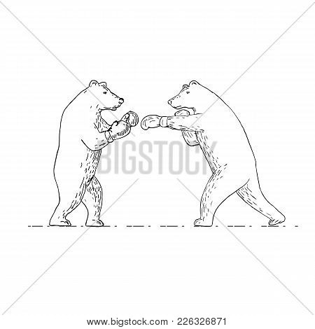Drawing Sketch Style Illustration Of Two Grizzly Bear Boxer Boxing Punching Viewed From Side On Isol