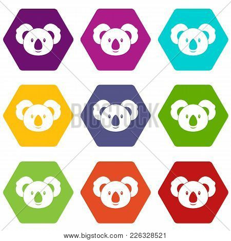Koala Icon Set Many Color Hexahedron Isolated On White Vector Illustration