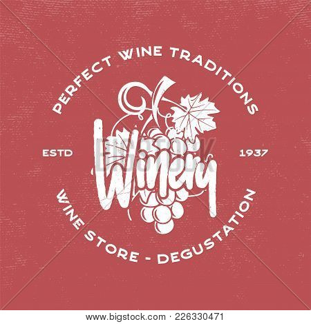 Wine, Winery Logo Template. Drink, Alcoholic Graffiti Art, Beverage Symbol. Vine Icon And Typography