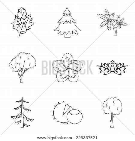 Spread Icons Set. Outline Set Of 9 Spread Vector Icons For Web Isolated On White Background