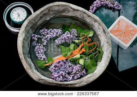 Huge Orange Scissors In An Old Basin With Water Among The Lilac Branch, Around The Clock With Dials